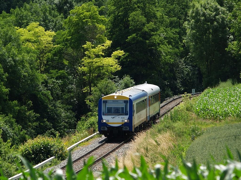 VS 201 und VT 410 bei der Nippenburg Foto: Jiří 7256 – 1024×768